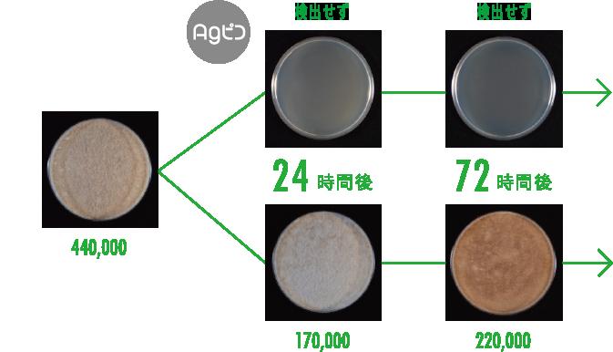 クロコウジカビの測定試験結果